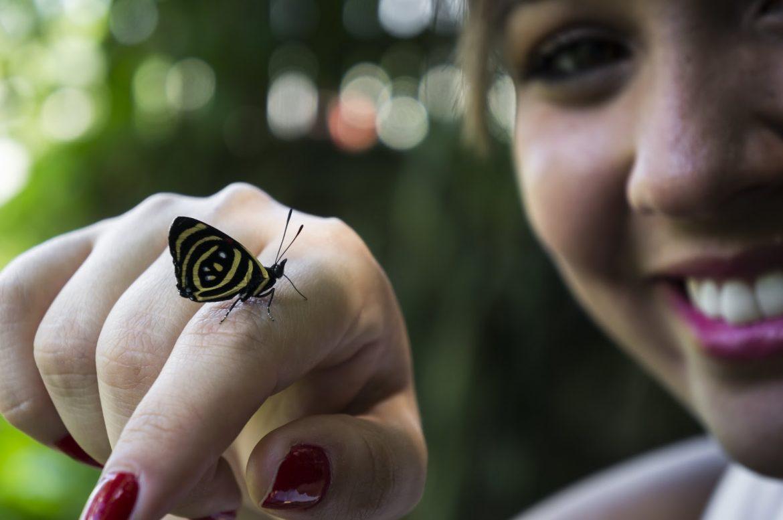 Mulher com borboleta na mão