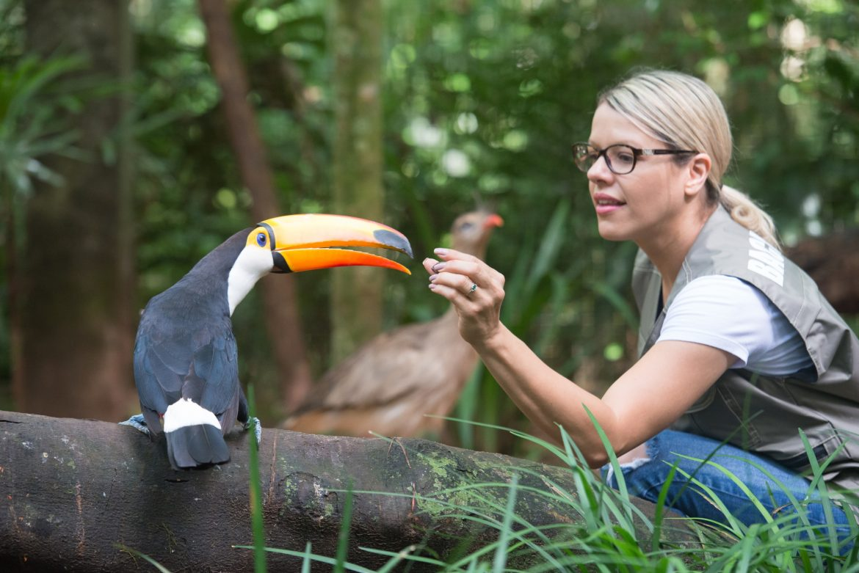 Turista no Parque das Aves em Foz do Iguaçu