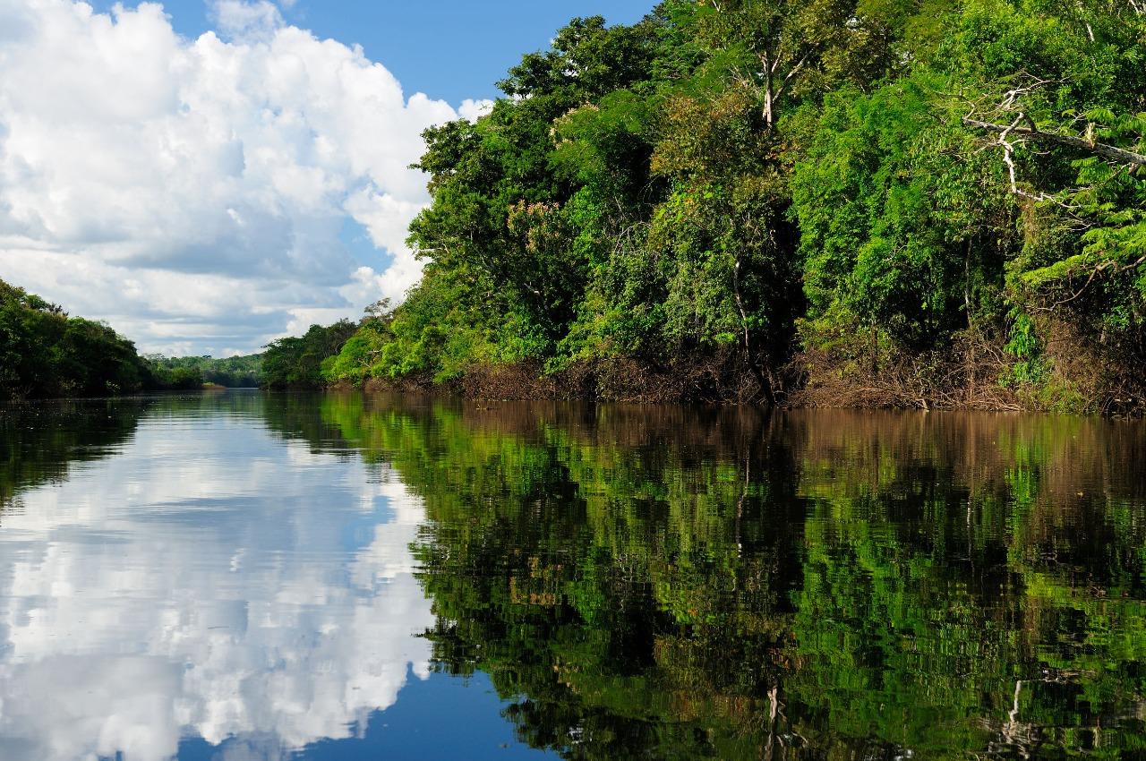 Amazônia uma das 7 maravilhas da Natureza