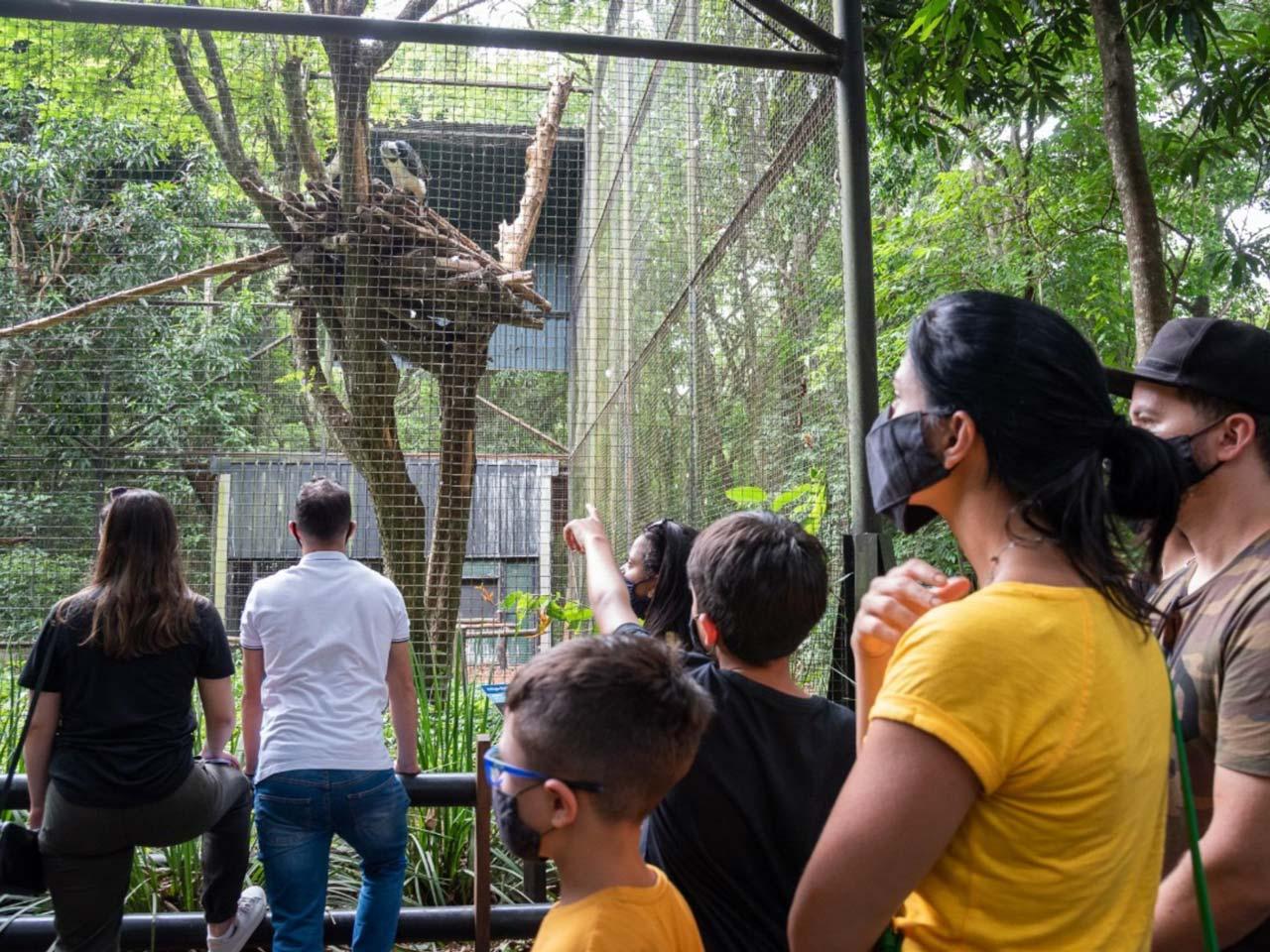 Refúgio de Itaipu como opção de passeio